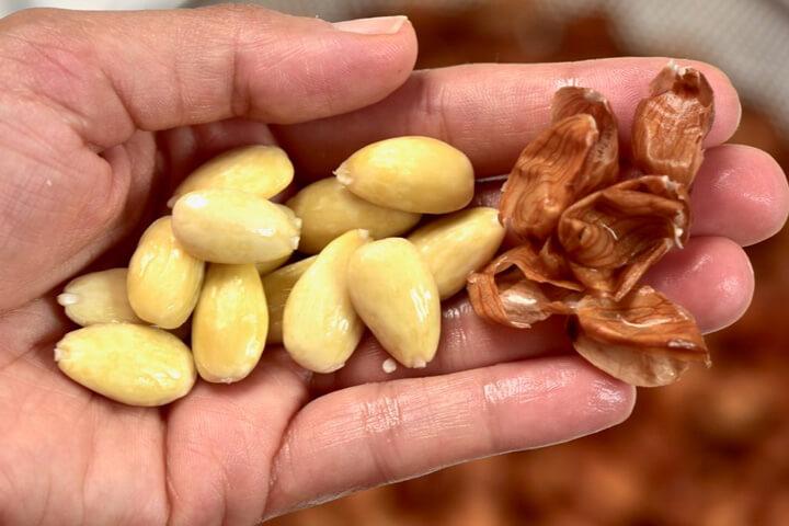 چطور پوست بادام را بگیریم